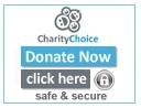 Charity-Choice-Donate-now-button