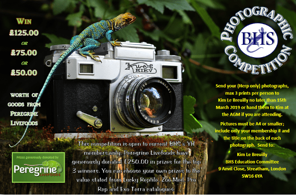 BHS Photography Competition 2019